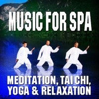 Music for Spa, Meditation, Tai Chi, Yoga and Relaxation by Relaxation